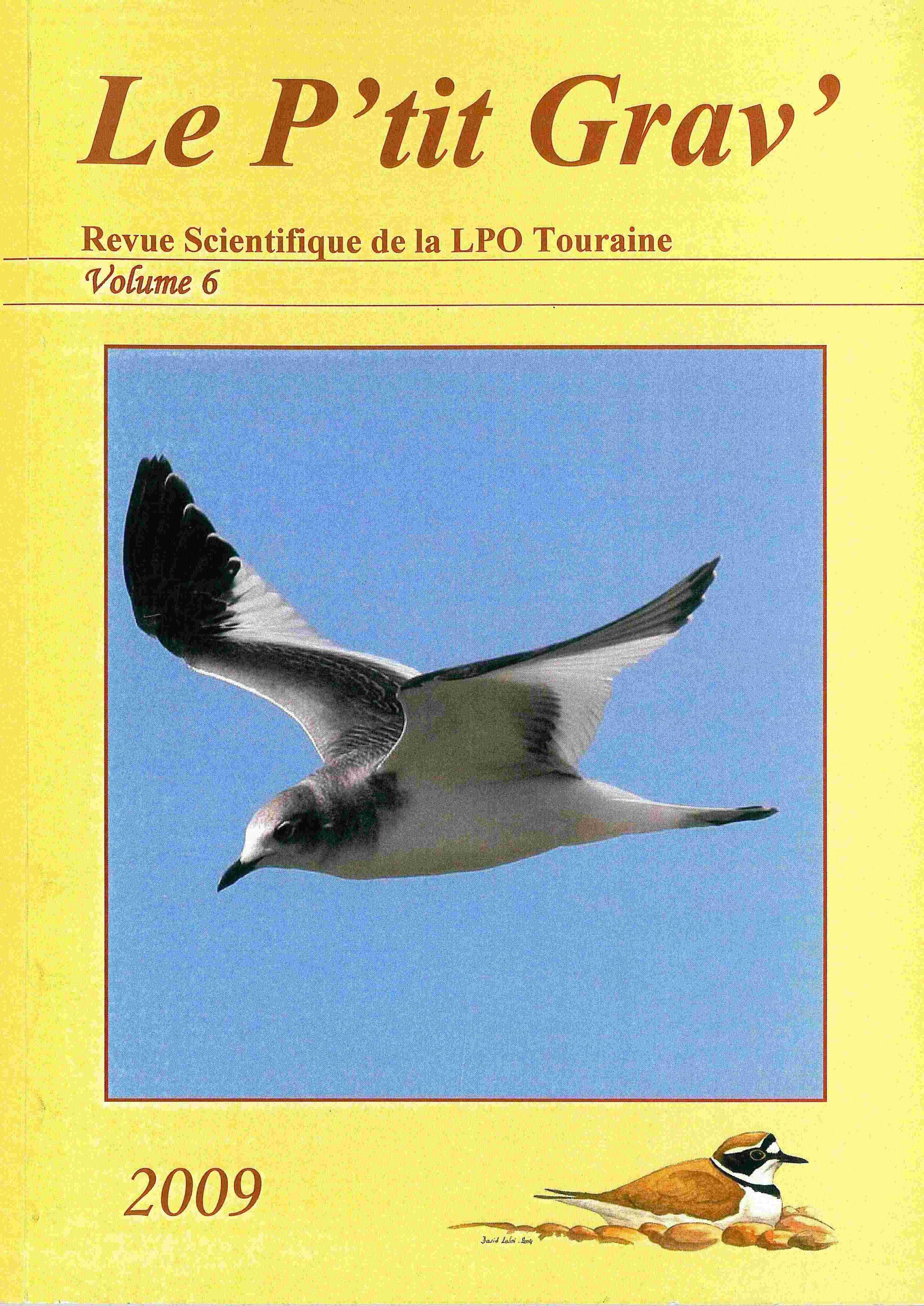 https://cdnfiles1.biolovision.net/www.faune-touraine.org/userfiles/MonDossier/PtitGravvol6.jpg