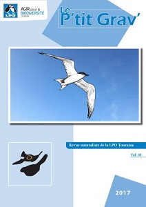 https://cdnfiles1.biolovision.net/www.faune-touraine.org/userfiles/PtitGravvol10couvimp-1-9993.jpg