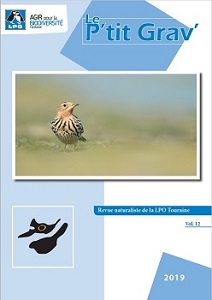 https://cdnfiles1.biolovision.net/www.faune-touraine.org/userfiles/PtitGravvol12couv.jpg