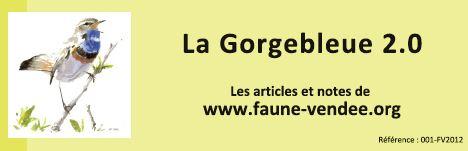 https://cdnfiles1.biolovision.net/www.faune-vendee.org/userfiles/Gb2.0.jpg