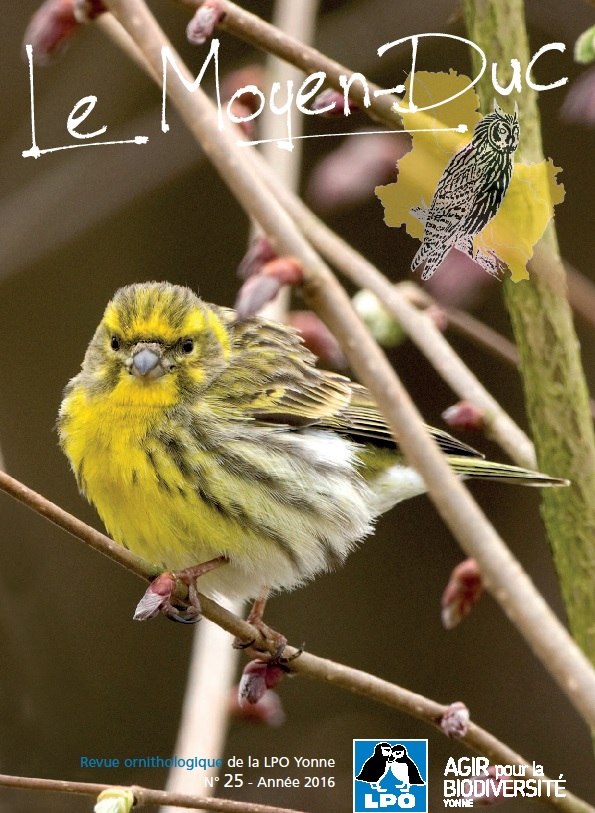 https://cdnfiles1.biolovision.net/www.faune-yonne.org/userfiles/LeMoyenduc/Sanstitre.jpg