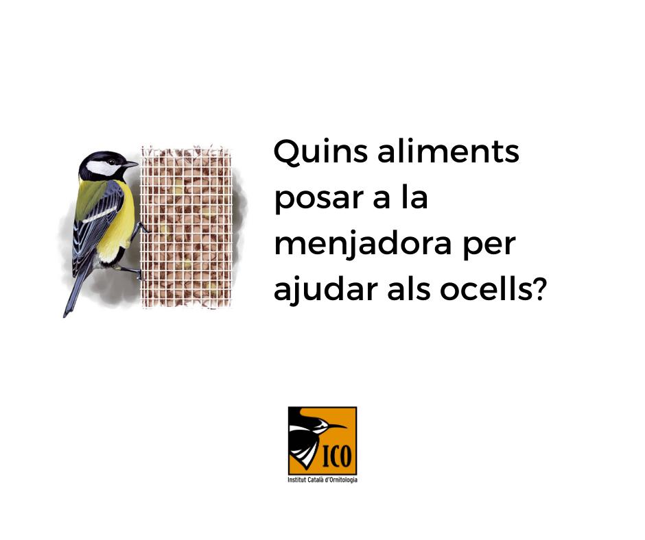 https://cdnfiles1.biolovision.net/www.ocellsdelsjardins.cat/userfiles/1_1.png