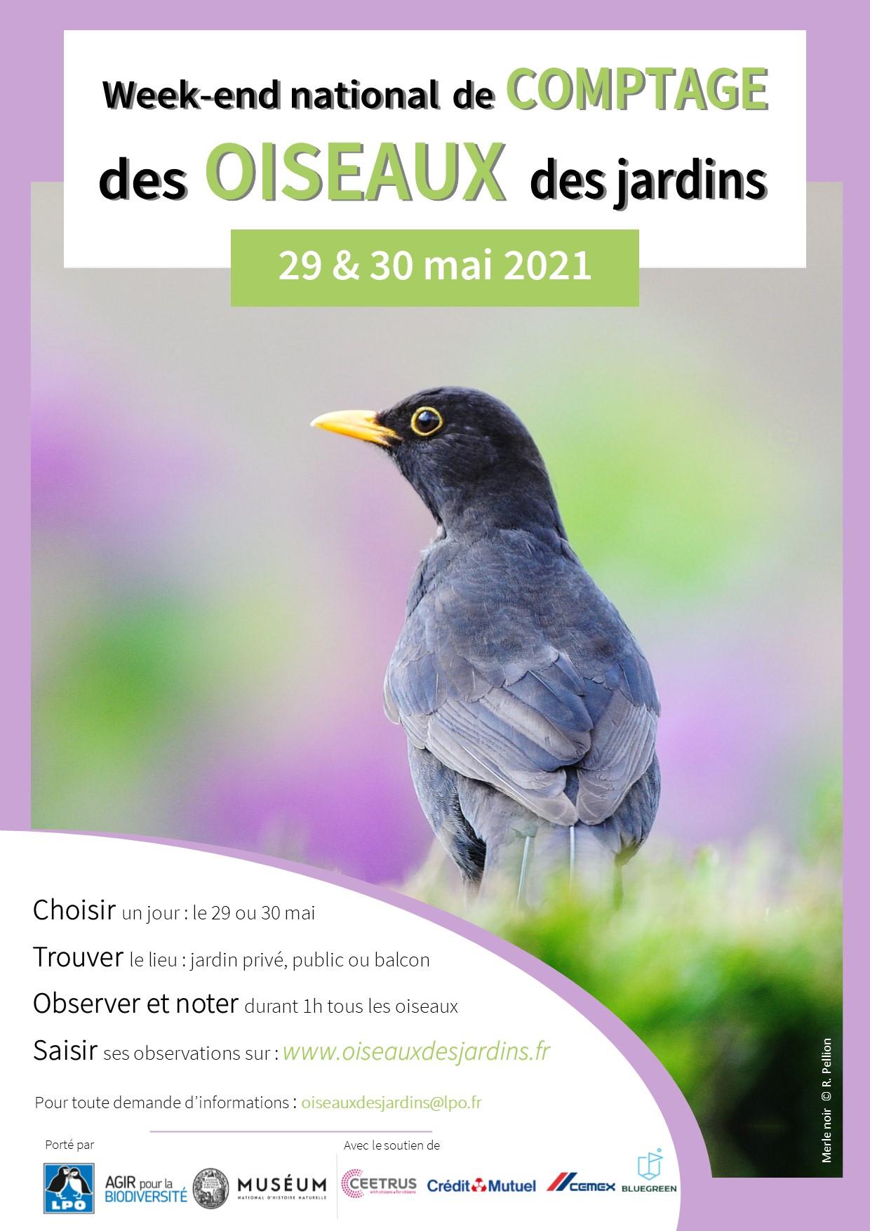 https://cdnfiles1.biolovision.net/www.oiseauxdesjardins.fr/userfiles/Affichecomptagemai2021V001.jpg