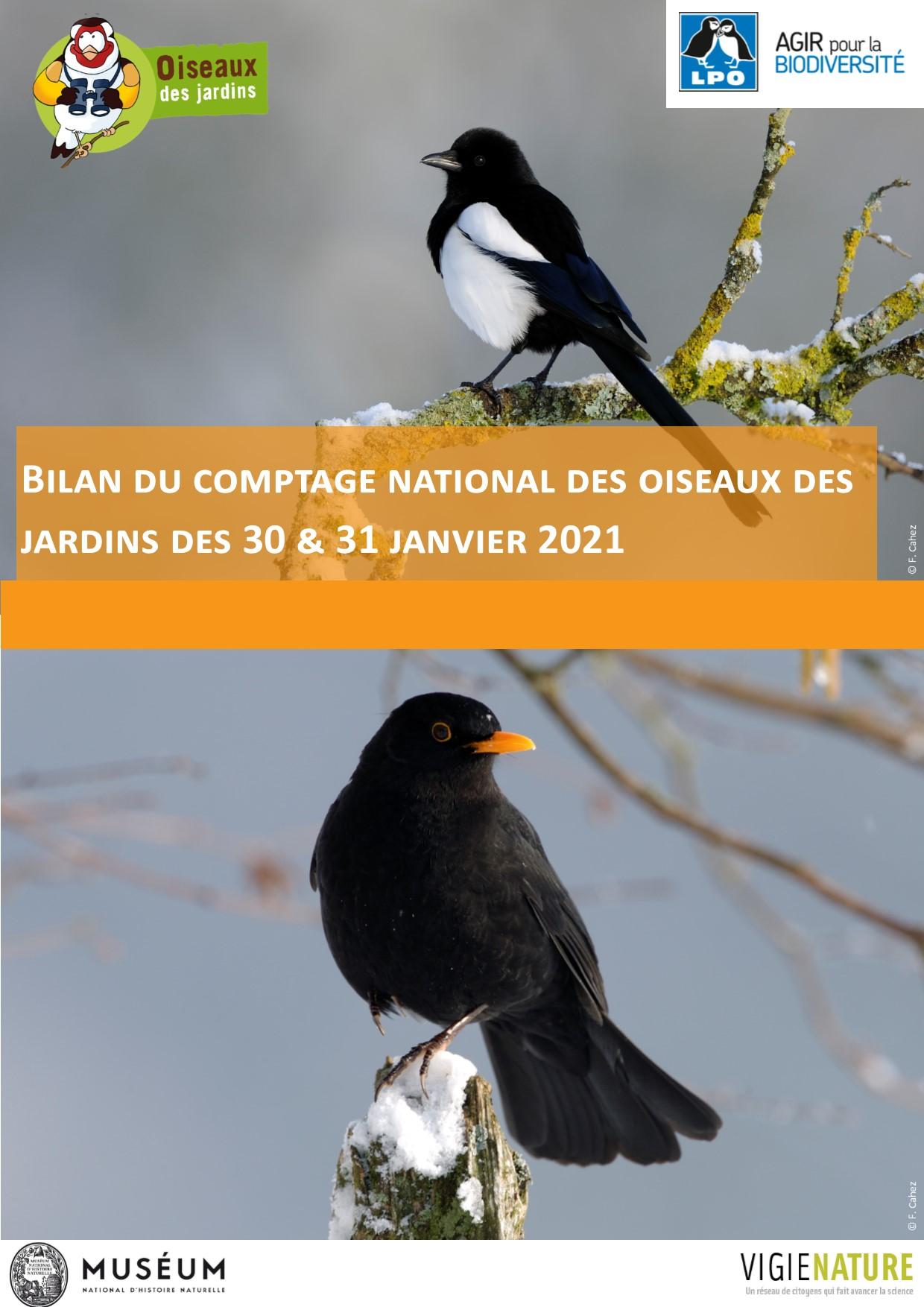 https://cdnfiles1.biolovision.net/www.oiseauxdesjardins.fr/userfiles/Bilancomptagejanvier2021VF.jpg