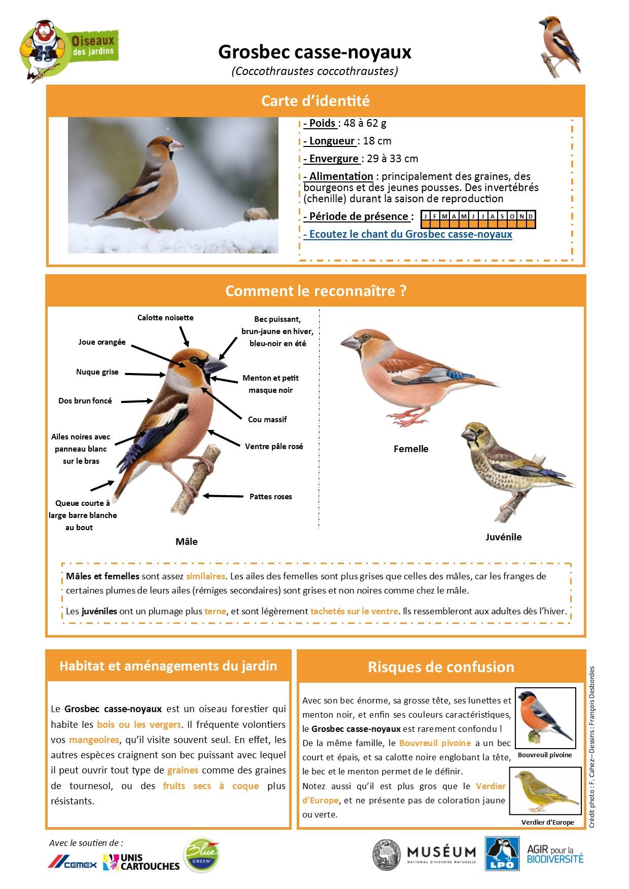 https://cdnfiles1.biolovision.net/www.oiseauxdesjardins.fr/userfiles/Fichesespces/FicheespceGB.pdf