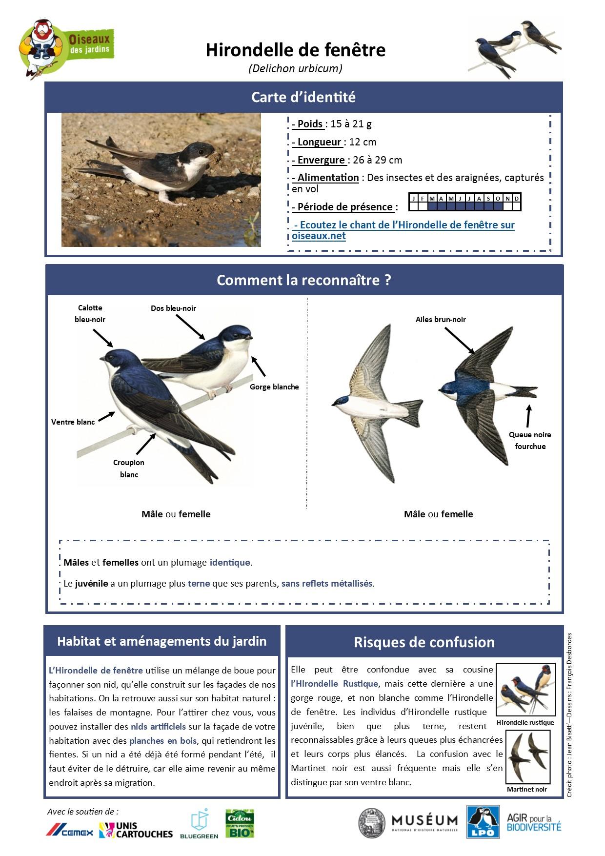 https://cdnfiles1.biolovision.net/www.oiseauxdesjardins.fr/userfiles/Fichesespces/FicheespceHF.pdf