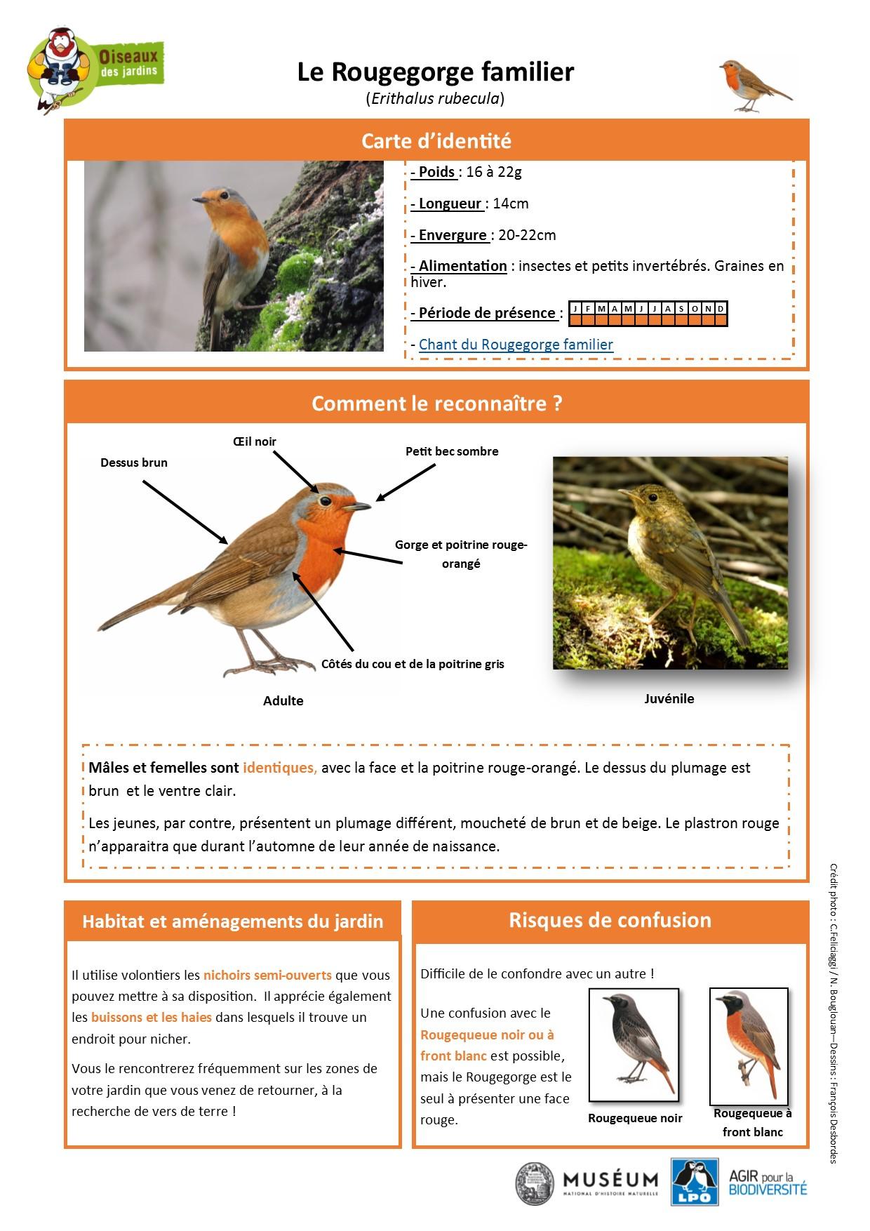 https://cdnfiles1.biolovision.net/www.oiseauxdesjardins.fr/userfiles/Fichesespces/FicheespceRGF.pdf