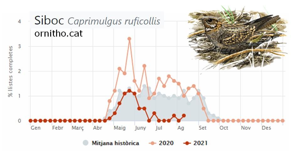 https://cdnfiles1.biolovision.net/www.ornitho.cat/userfiles/siboc.jpg