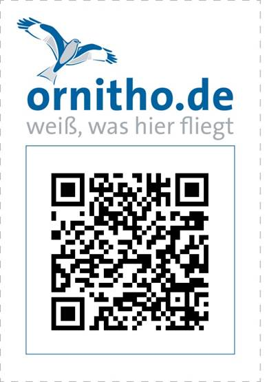 https://cdnfiles1.biolovision.net/www.ornitho.de/userfiles/infoblaetter/Anleitungen/QRCodes/Beispielcode.jpg